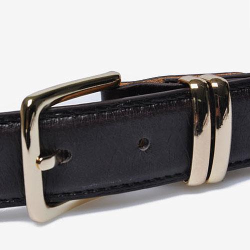 Luxurious Gold Buckle Leather Belt-Belt 26